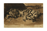 Tiger Lying Down; Tigre Couche  1858