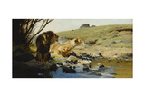 A Lion and Lioness at a Stream
