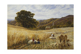 Harvest Time Near Holmbury Hill  Surrey  1865