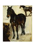 Three Studies of Horses; Trois Etudes De Chevaux  C1823