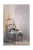 Study of a Dog on a Chair