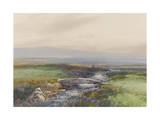 Wallabrook  Clapper Bridge  Dartmoor   C1895-96