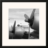 Vintage Flight I