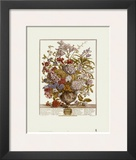 Twelve Months of Flowers  1730  July