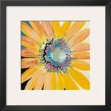 Sunshine Flower IV