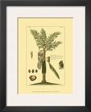 Printed Exotic Palm VI