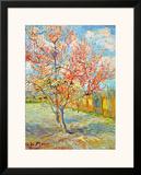 Peach Tree in Bloom at Arles  c1888