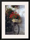 Flower Box Bike