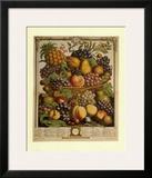 Fruits of the Season Winter