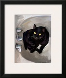 Black Cat Lookin'