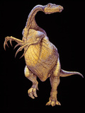 Therizinosaurus Dinosaur