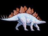 Artwork of Stegosaurus Dinosaur  Stegosaurus Sp