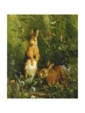 Hares Giclée par Olaf August Hermansen