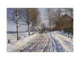 Winter Scene  Dalarne