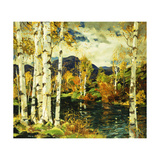 Birches Giclée par Jonas		 Lie