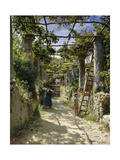 In the Shadow of an Italian Pergola  A Warm Afternoon in Anacapri