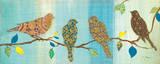 Bird Chat II