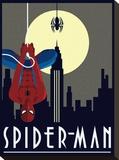 Spider-Man Hanging