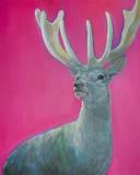 Neugieriger Hirsch vor Pink