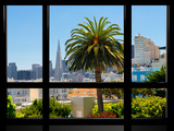 Window View  Special Series  Downtown  Transamerica Pyramid  San Francisco  California  US