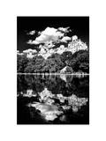 Landscape Mirror  Central Park  Conservatory Water  Manhattan  New York  White Frame