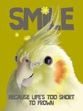 Smile II
