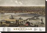 Bird's Eye View of Louisville  Kentucky  1876