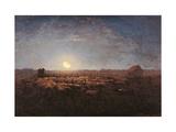 Sheep Meadow  Moonlight