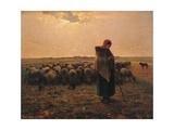 Shepherdess with Her Flock