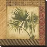 Palm Song III