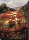 Carmine Meadow Tableau sur toile par Leila