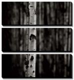 Equilibrium Tableau multi toiles par Jamie Cook