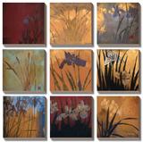 Iris - Patchwork II Tableau multi toiles par Don Li-Leger