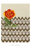 Rosa Dawn I Reproduction d'art par Vanna Lam