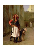 Arnaut of Cairo  1871