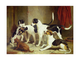 Portrait of Favorite Foxhounds