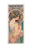 Primrose  1899