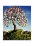 Magnolia Tree  1989