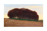 Dorset Clump of Trees  2012