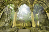 Ancient Gothic Arches In The Myst Fantasy Landscape In Evora  Portugal