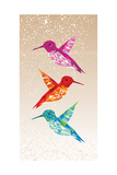Colorful Humming Birds Illustration