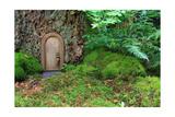 Little Wooden Fairy Tale Door In A Tree Trunk