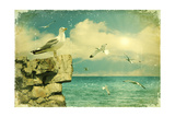 Seagulls In The SkyVintage Nature Seascape Background