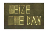 "Earthy Background And Design Element Depicting The Words ""Seize The Day"""