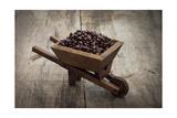 Coffee Beans In A Wheelbarrow