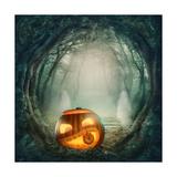 Pumpkin In Dark Forest