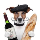 French Dog Wine Baguete Beret Papier Photo par Javier Brosch