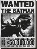 Batman Arkham Origins (Wanted)