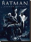 Batman Arkham Origins (Montage)