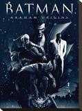 Batman Arkham Origins (Montage) Tableau sur toile